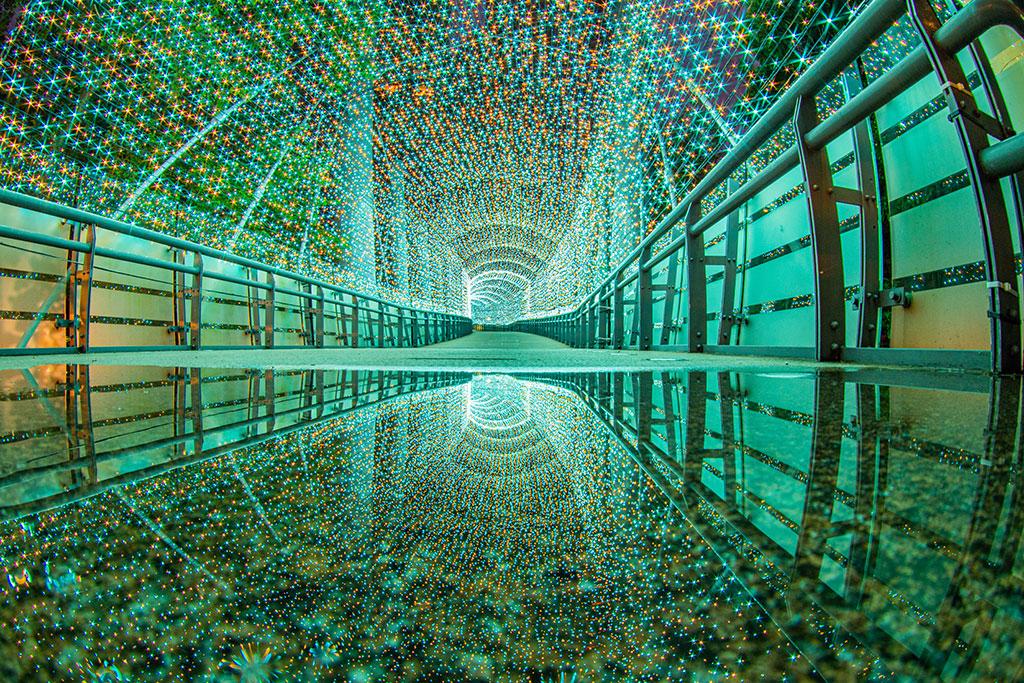變色光廊-綠  年度:2019  來源:新北市政府觀光旅遊局