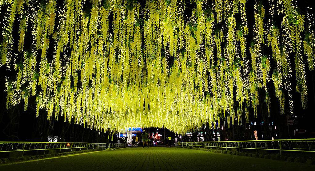 天空花園  年度:2019  來源:屏東縣政府