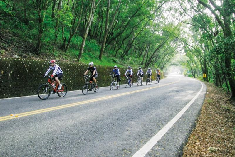 139景觀道路