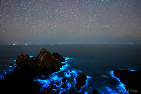 一生必看一次 夢幻藍星河-馬祖藍眼淚