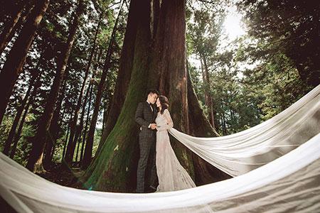 千年神木見證!全台最浪漫阿里山森林婚禮 「限量開放15對新人」