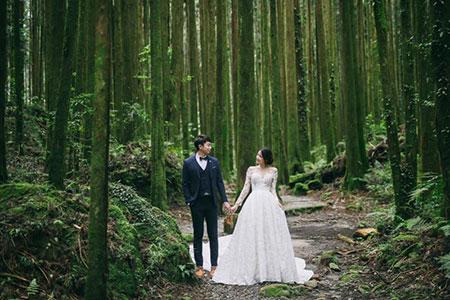 浪漫值破表~神木下/星光下婚禮和浪漫遊程活動 與您幸福相約阿里山