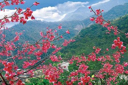 台灣觀光資訊網LBS行動領航服務上線 旅遊行動資訊不漏接